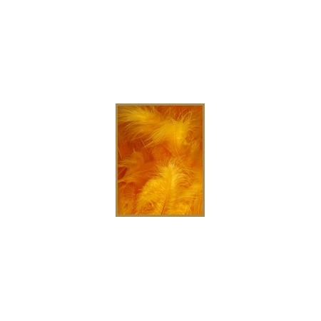 10 gr de plumes ORANGE FONCE